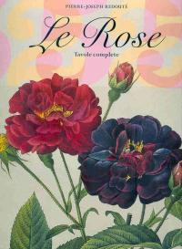 Le Rose - Redouté