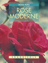 Rose moderne - Mollia