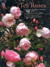 Tea Roses: Old Roses for Warm Gardens - Chapman